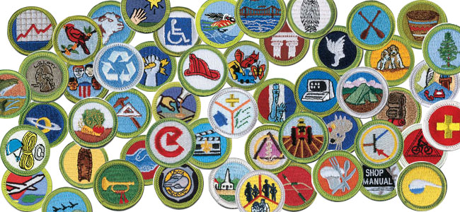BSA's Newest Merit Badges